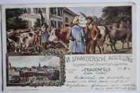 Carte postale ancienne Schweizerische Ausstellung Frauenfeld 1903 Suisse
