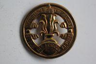 Insigne de béret République de Côte d'Ivoire École des Forces armées