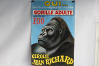 Affiche Cirque Jean Richard Gorille vedette du zoo