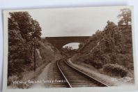 Carte postale ancienne Angleterre Views of Railway Wyre Forest