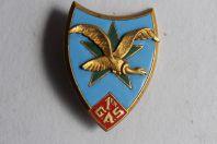 Insigne militaire 1er G.A.S. Sahara vautour