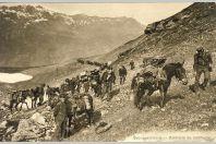Carte Postale ancienne Artillerie de montagne Gebirgsartillerie