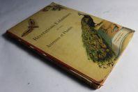 Ancien livre illustré Récréations enfantines Animaux Plantes Esslingen