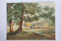 Aquarelle originale Paysage boisé