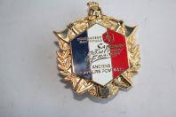 Insigne Anciens Sapeurs Pompiers France Haute-Savoie 74