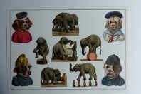 Images chromos gaufrés découpés éléphants et chiens au cirque 1890